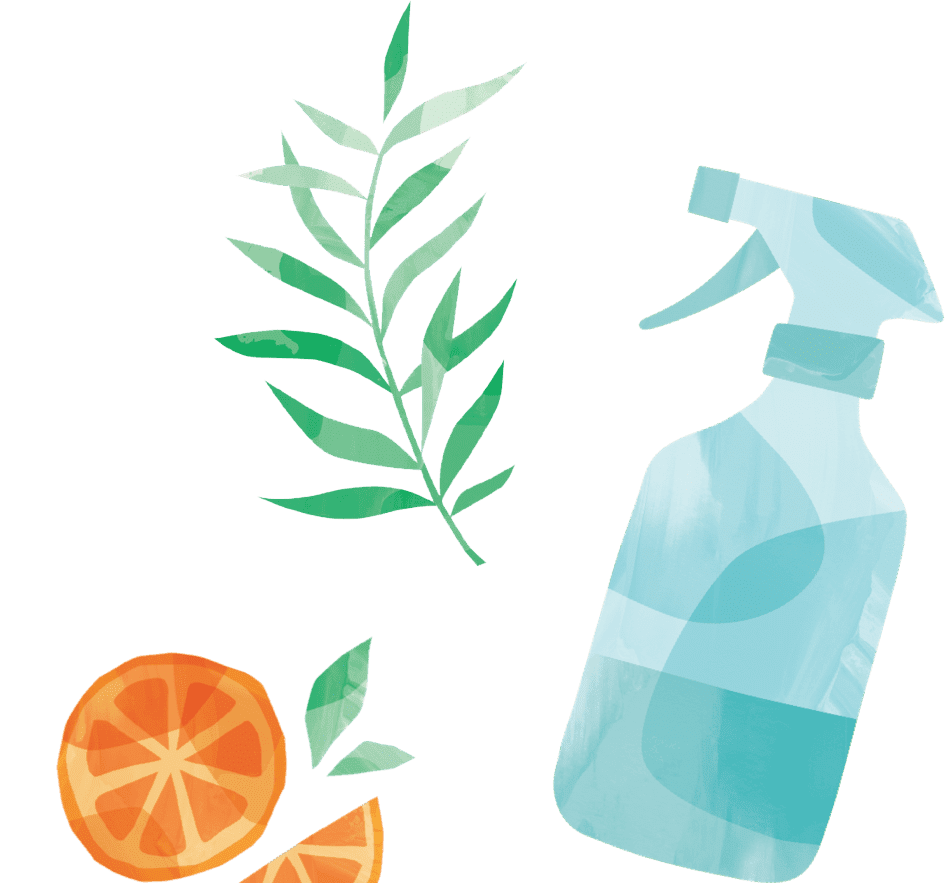 Grove orange plant and cleaning bottle sketch