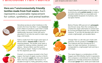 Food for the Ark – Chapter Two: Functional Fruit Fabrics