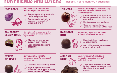 Chocolate Therapy for Friends and Lovers